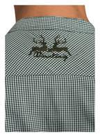 Wiesnkönig Trachtenhemd LASSE, Farbe: GRÜN/ WEISS KARIERT (Bild 1)