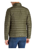 SAVE THE DUCK Steppjacke GIGA 7, Farbe: OLIV (Bild 1)
