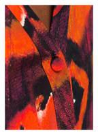 ALEXANDER McQUEEN Seidenbluse, Farbe: ROT/ IVORY/ SCHWARZ (Bild 1)