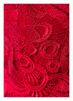 LAUREN RALPH LAUREN Spitzenkleid RAYDONNA, Farbe: ROT (Bild 1)