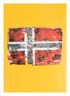 NAPAPIJRI T-Shirt SEITEM, Farbe: GELB (Bild 1)