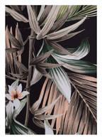 SEAFOLLY Bikini-Hose OCEAN ALLEY , Farbe: SCHWARZ/ KHAKI/ WEISS (Bild 1)
