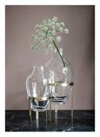 Nordstjerne Vase ADORN , Farbe: TRANSPARENT (Bild 1)