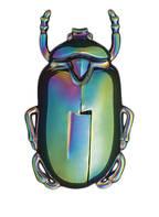 DOIY Korkenzieher INSECTUM , Farbe: GRÜN/ LILA (Bild 1)