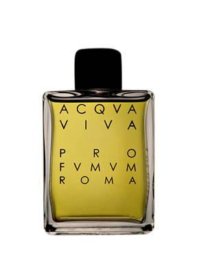 PRO FVMVM ROMA ACQVA VIVA