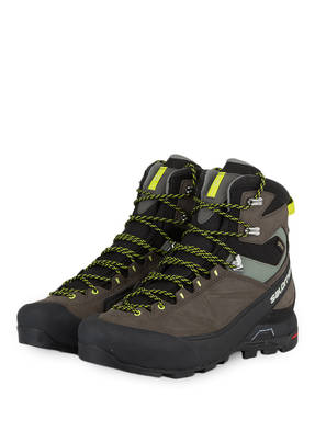 SALOMON Outdoor-Schuhe X ALP MTN GTX®