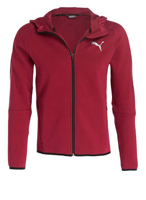 PUMA Sweatjacke EVOSTRIPE SHIELD