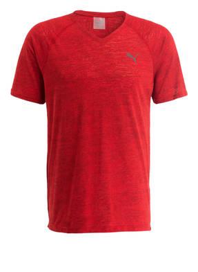 PUMA T-Shirt DRI RELEASE