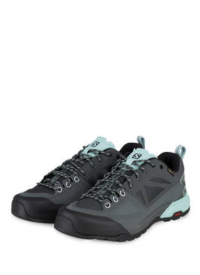 SALOMON Outdoor-Schuhe X ALP SPRY GTX® W