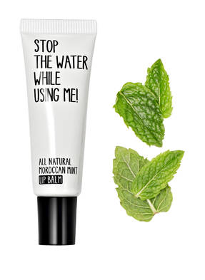 STOP THE WATER WHILE USING ME! MOROCCAN MINT