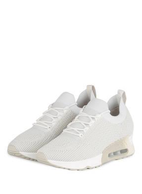 ash Sneaker LUNATIC