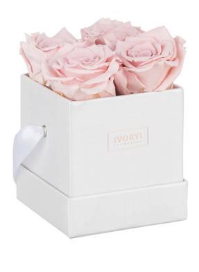 IVORYI Flowerbox MIAMI VIBES