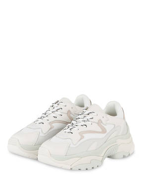 ash Plateau-Sneaker ADDICTION