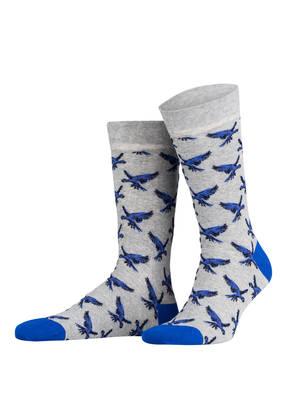 TED BAKER Socken LILHAV