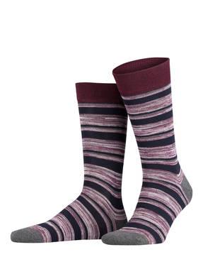 TED BAKER Socken SEFFNER