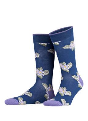 TED BAKER Socken RINGMER
