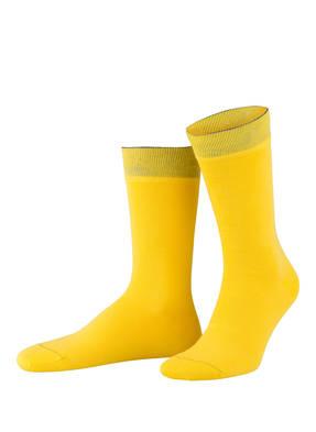 VON Jungfeld 3er-Pack Socken BASIS