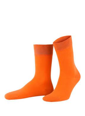 VON Jungfeld 6er-Pack Socken FARBEXPLOSION