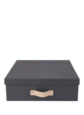 BIGSO BOX OF SWEDEN Aufbewahrungsbox OSKAR