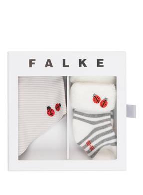 FALKE Set: Socken und Halstuch in Geschenkbox
