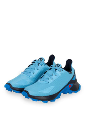 SALOMON Multifunktionsschuhe ALPHACROSS BLAST CSWP