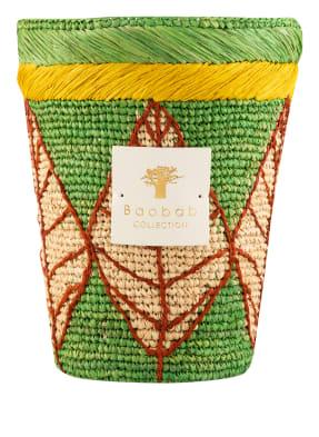 Baobab COLLECTION Duftkerze MANGA