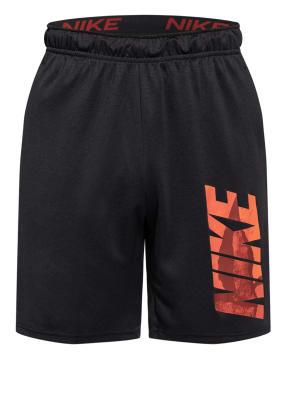 Nike Trainingsshorts DRI-FIT