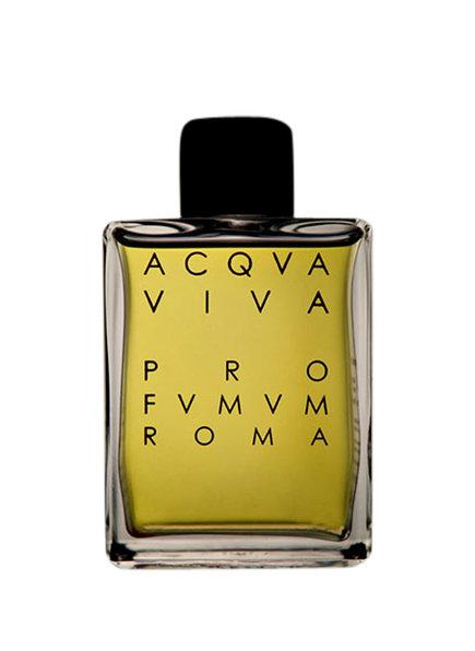PRO FVMVM ROMA ACQVA VIVA (Bild 1)