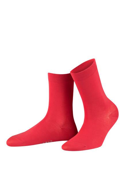 FALKE Socken COTTON TOUCH , Farbe: ROT (Bild 1)