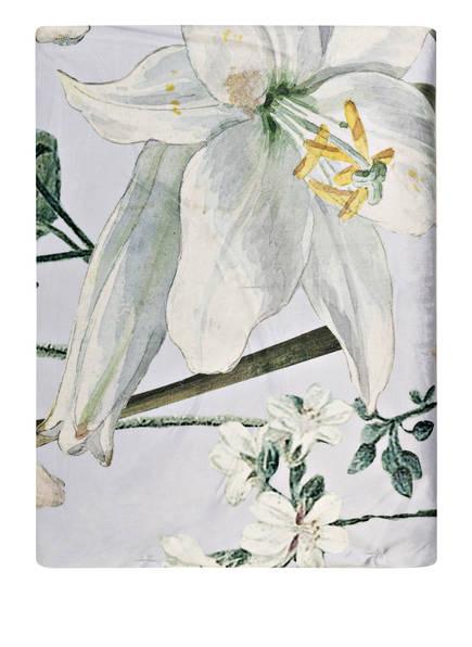 ESSENZA Samt-Plaid ROSALEE, Farbe: HELLGRAU/ CREME/ GRÜN (Bild 1)