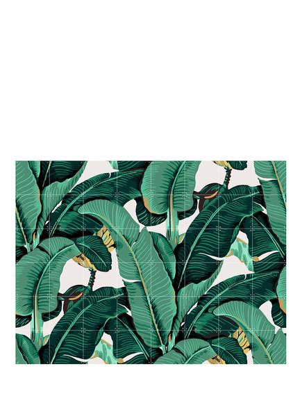IXXI Wandpuzzle BANANA LEAF , Farbe: GRÜN/ WEISS (Bild 1)