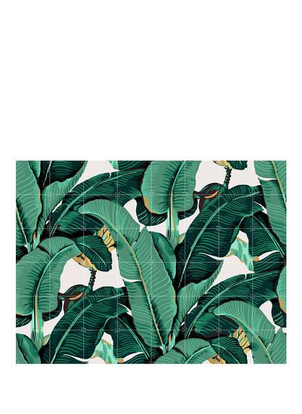 IXXI Wandpuzzle BANANA LEAF, Farbe: GRÜN/ WEISS (Bild 1)