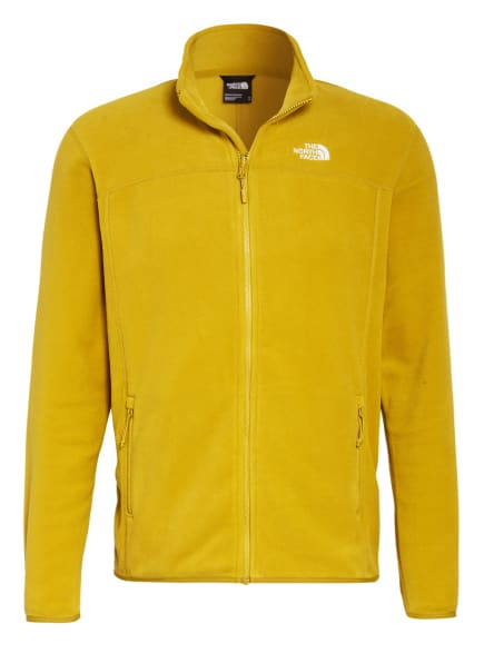 THE NORTH FACE Fleecejacke 100 GLACIER, Farbe: HELLGRÜN (Bild 1)